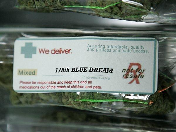 how to start up a marijuana farm