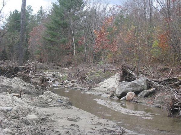Log Jams Left Behind By Irene for fish habitat?