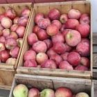 apples_crates1_150.jpg