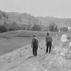 arthur_rothstein-windsor_county-cutting_hay_300.jpg