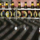 beer_600.jpg