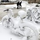bikes_3.jpg