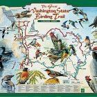 birding_trails.jpg