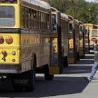 bus_2.jpg