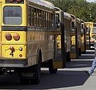 busses200.jpg