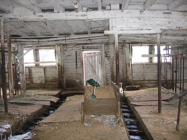 Last Dairy Farm In Rockingham Sells Herd Vpr Archive