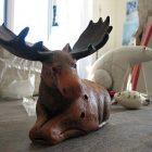 moose_340x255.jpg
