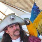 pirate_parrot.jpg