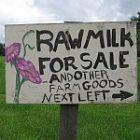 raw_milk.jpg