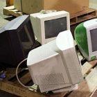 recycle_290.jpg