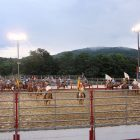 rodeo_600x450.jpg
