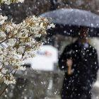 snow_600.jpg