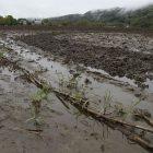 soggy_farm_field_600x450.jpg