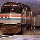 train_toby.jpg