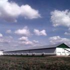 vermont_egg_farms.jpg