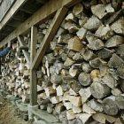 wood300.jpg