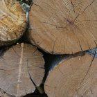 wood_600x450.jpg